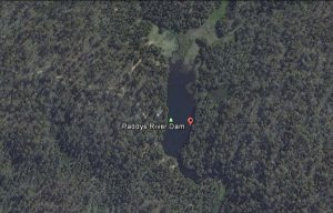Paddy's_River_Dam Bago State Forest