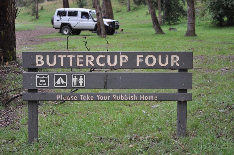Buttercup4web