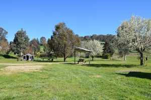 Tuena Camping Area